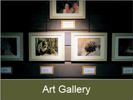 click to learn more about Discovery Center's art gallery